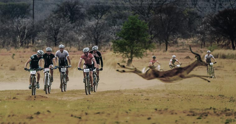 THE TIME FREIGHT EXPRESS MTB – WATCH OUT THE BUCK !!!