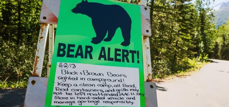 BIKING FOR LIFE – BEAR ATTACK